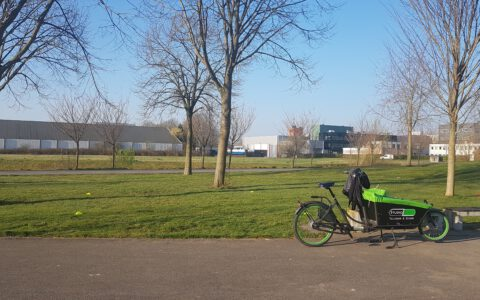 Alle trainingen Taiji & Qigong buiten in park Blokhoeve